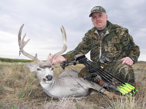 mule deer buck hunted and taken with a bow