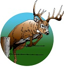 Whitetail Deer Hunting Logo