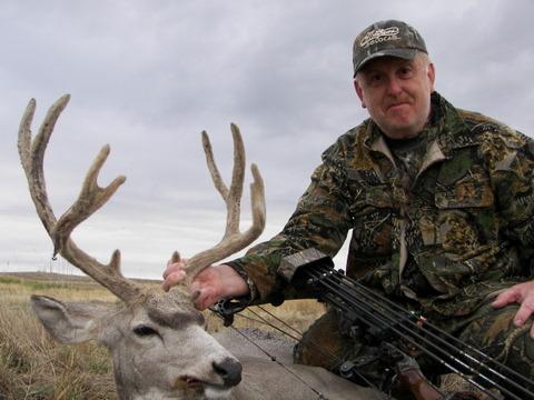 Mule Deer 2006